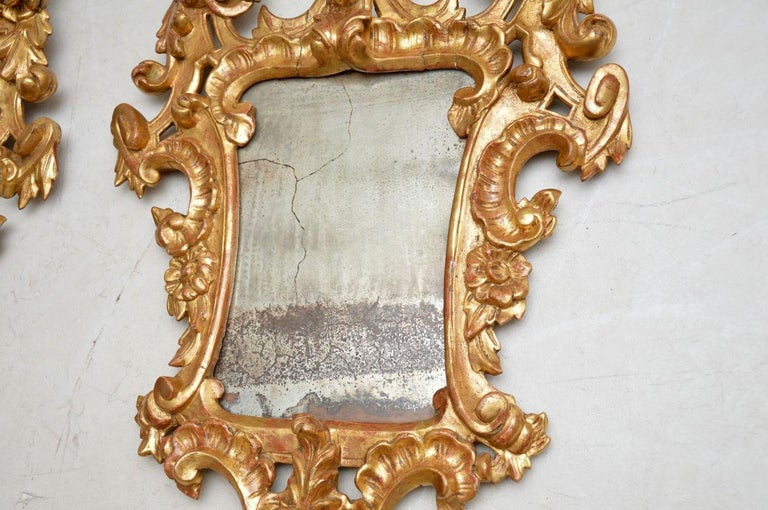 Louis XV Pair of Antique French Gilt Wood Mirrors For Sale