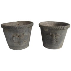 Pair of Antique French Lead Planter Pots with Bumblebee Design