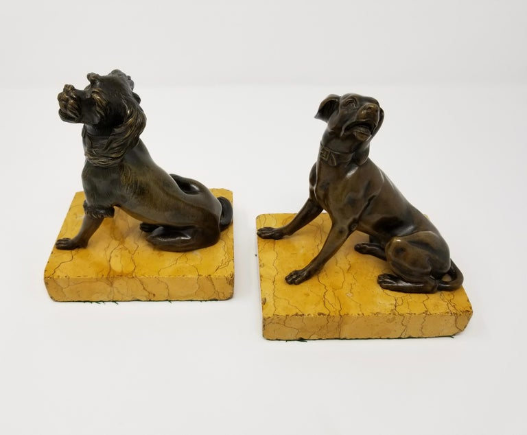 A beautiful pair of 19th century antique grand tour patinated bronze dogs seated on siena marble plinths. Each dog is beautifully cast and hand-chiseled with meticulous craftsmanship. Each dog is further decorated in a beautiful brown patina, with