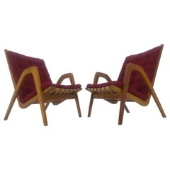 Pair of Art Deco Armchairs Designed by Jan Vanek, 1930s