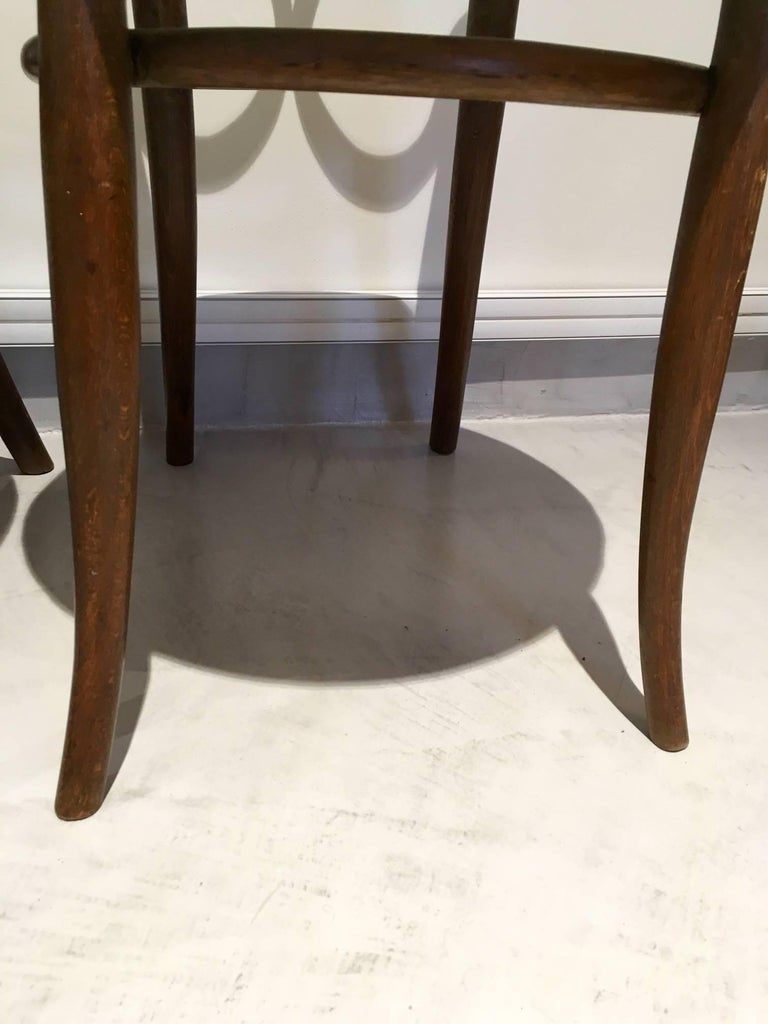 Pair of August Thonet Bentwood Chairs by Thonet Bros For Sale 1