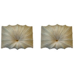 Pair of Ayala Serfaty Aqua Creations Zika Wall Sconces Wall Lights