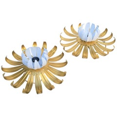 Pair of Banci Firenze Sconces or Flush Mount Nenuphar, 3 Pairs Available