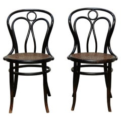 Pair of Bentwood and Rattan Hofman Black Chairs, circa 1900