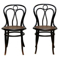 Pair of Bentwood and Rattan Hofman Black Chairs, circa 1900