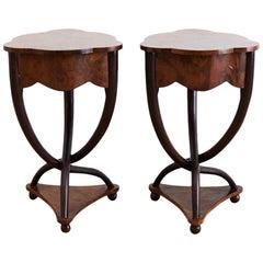 Pair of Biedermeier Bent Leg Burl Wood Tables