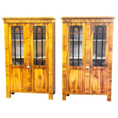 Pair of Biedermeier Early 19th Century Bookcases Display Cabinets