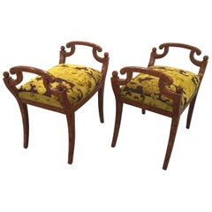 Pair of Biedermeier Faux Tortoise Painted Benches
