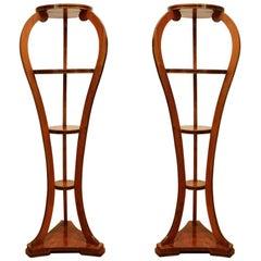 Pair of Biedermeier Style Walnut Wood and Ebonized Wood Open Shelves Bookcases