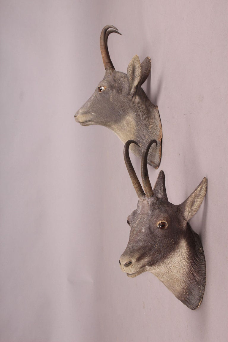 Pair of Black Forest or Brienz Head In Good Condition For Sale In Meyrin, CH