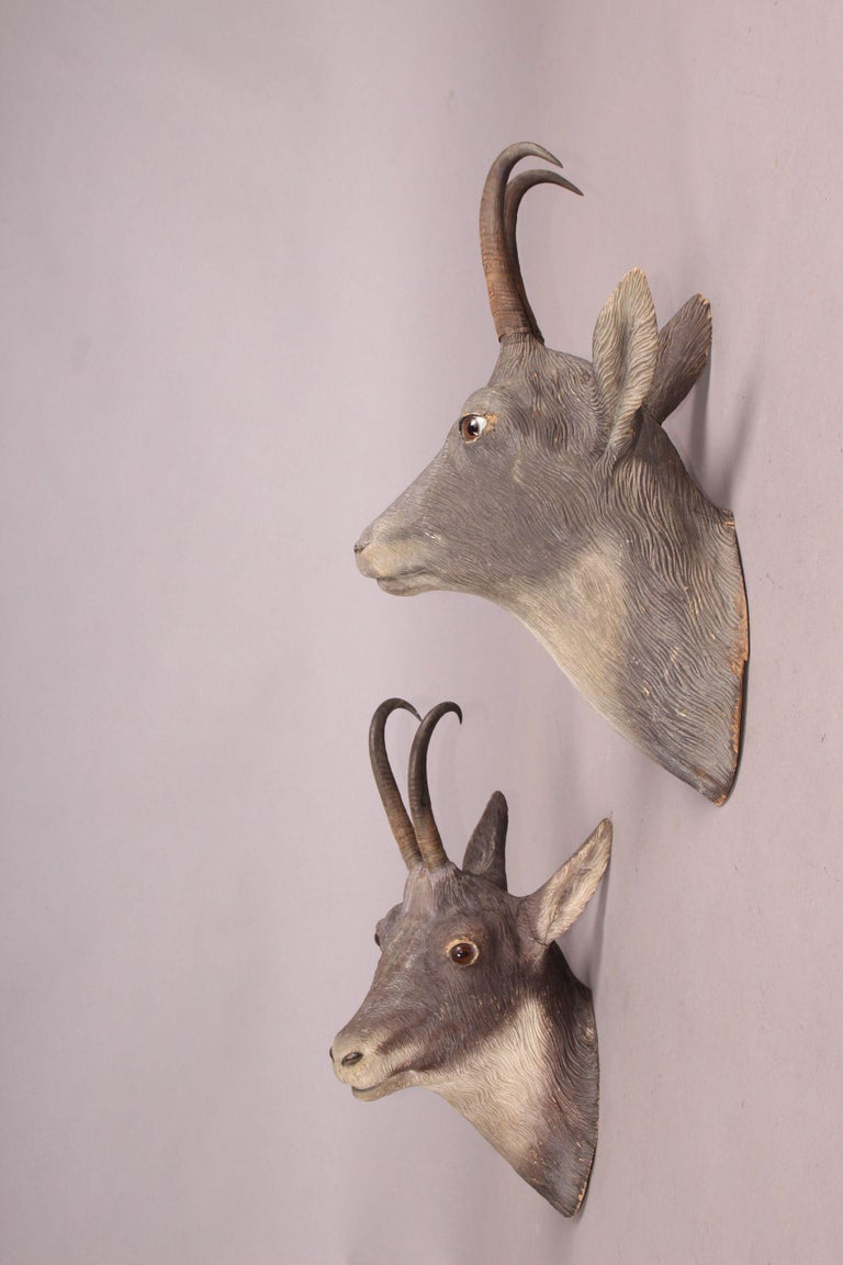 Early 20th Century Pair of Black Forest or Brienz Head For Sale