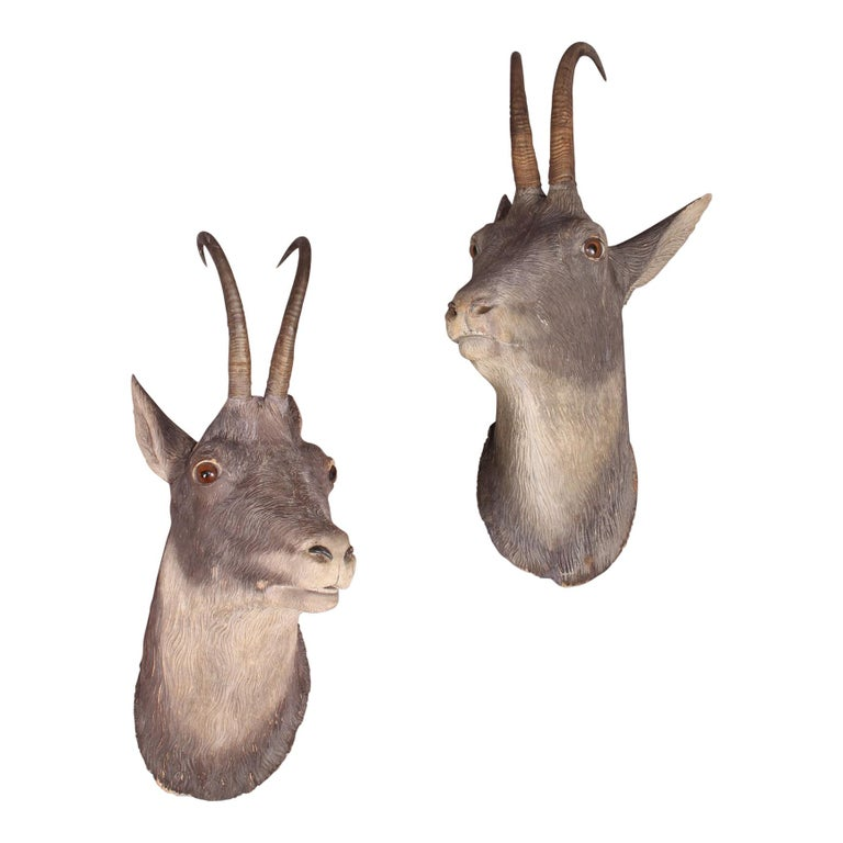 Pair of Black Forest or Brienz Head For Sale
