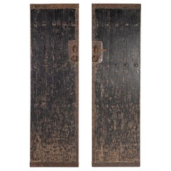 Pair of Black Patina South Asian Doors