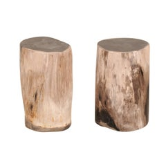 Pair of Black Topped Cream Petrified Wood Drink Tables