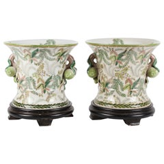 Pair of Botanical Painted Cachepots