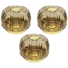 Pair of Brass and Amber Glass Sconces or Flushmount by Limburg, Germany, 1960s