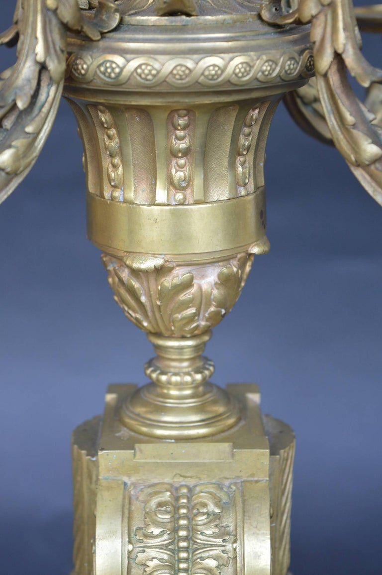 Pair of Bronze 19th Century Candelabras For Sale 1