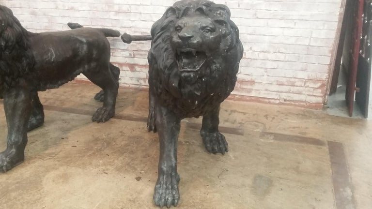 Thai Pair of Bronze Lions For Sale
