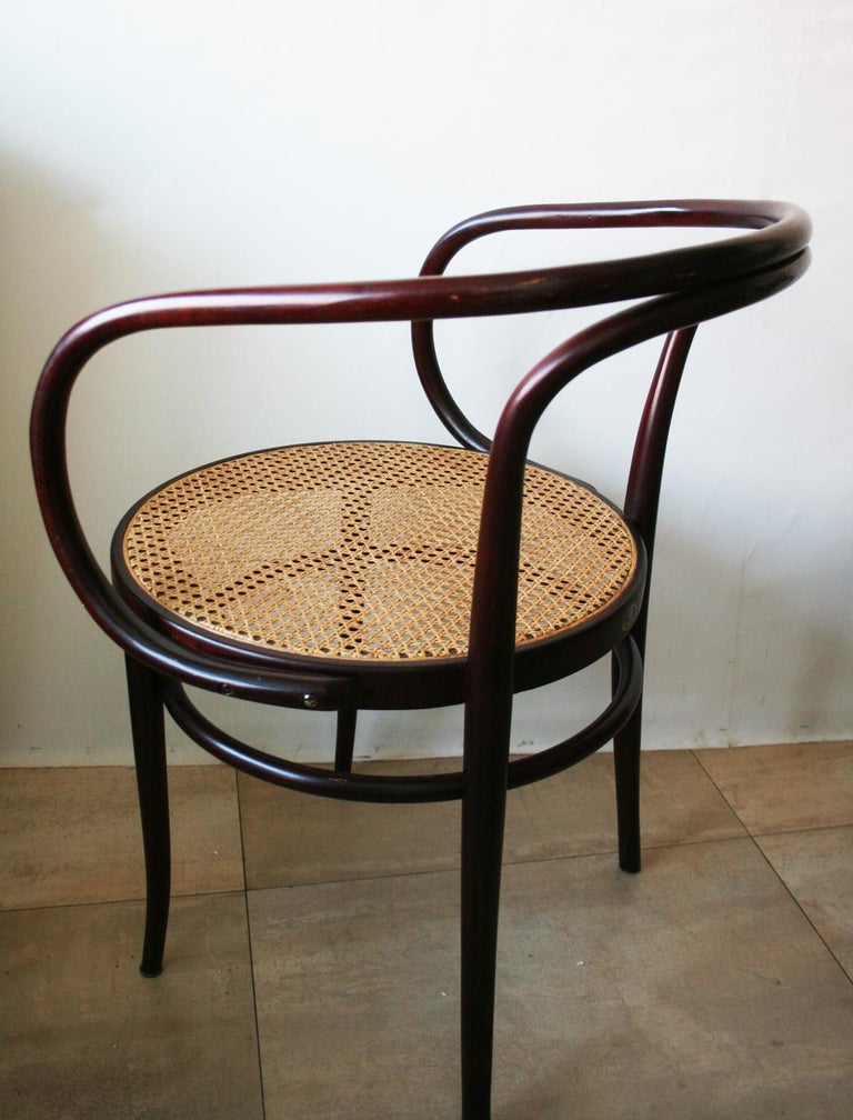 Pair of Cane and Bentwood Chairs after Thonet 209, 1950s For Sale 4