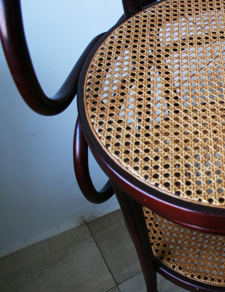 Pair of Cane and Bentwood Chairs after Thonet 209, 1950s For Sale 5