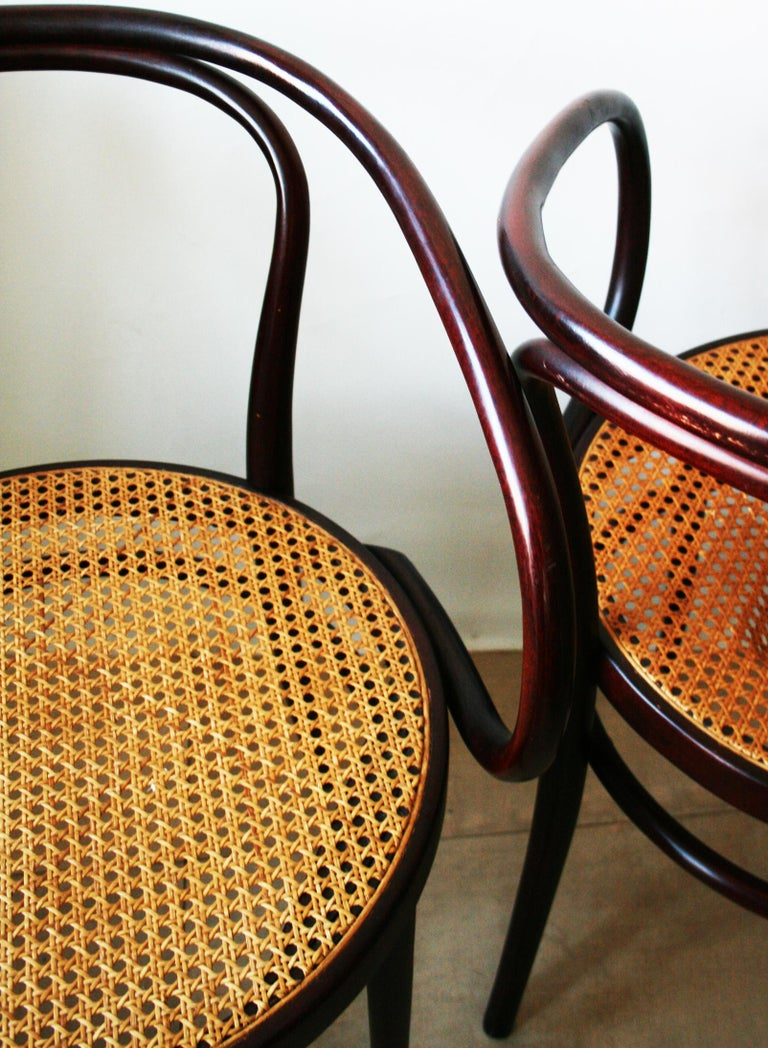 Pair of Cane and Bentwood Chairs after Thonet 209, 1950s For Sale 6