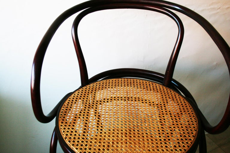 Pair of Cane and Bentwood Chairs after Thonet 209, 1950s For Sale 10