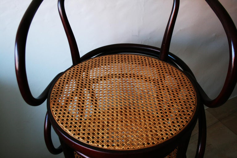 Pair of Cane and Bentwood Chairs after Thonet 209, 1950s For Sale 11