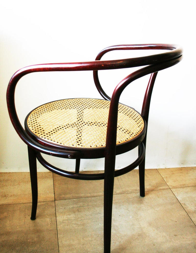 20th Century Pair of Cane and Bentwood Chairs after Thonet 209, 1950s For Sale