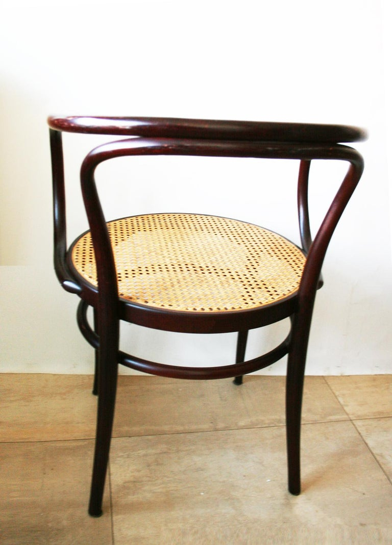 Pair of Cane and Bentwood Chairs after Thonet 209, 1950s For Sale 1