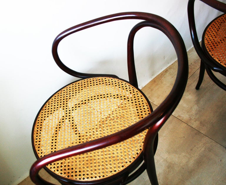 Pair of Cane and Bentwood Chairs after Thonet 209, 1950s For Sale 3