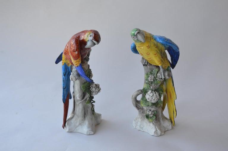 20th Century Pair of Capodimonte Porcelain Parrots For Sale