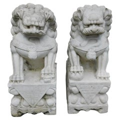 Pair of Chinese Carved Marble Foo Dogs Sitting on Decorative Plinths, 20th Cent