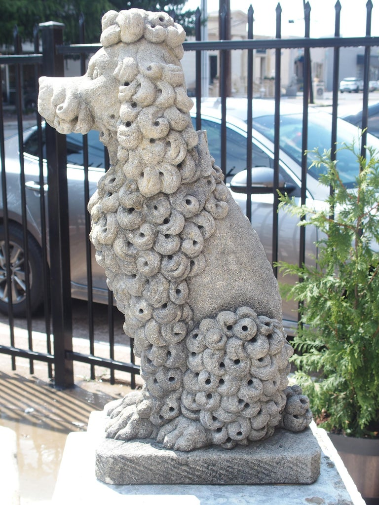 Pair of Carved Limestone Poodles from Italy 11