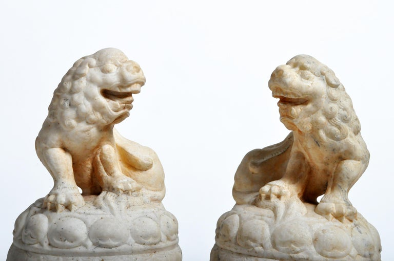 Pair of Carved Marble Fu Dogs on Pedestal For Sale 2