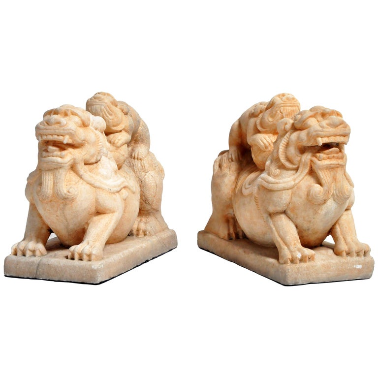 Pair of Carved Marble Fu Dogs on Pedestal For Sale