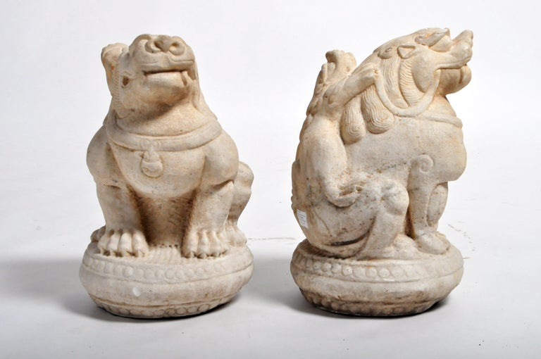 "Often referred to as ""Foo Dogs"" or ""Fu Dogs"" in western culture, these handsome stone sentinels are iconic gatekeepers seen throughout Asia. Traditional symbols of protection, they are made from durable materials like bronze, stone, or marble and"