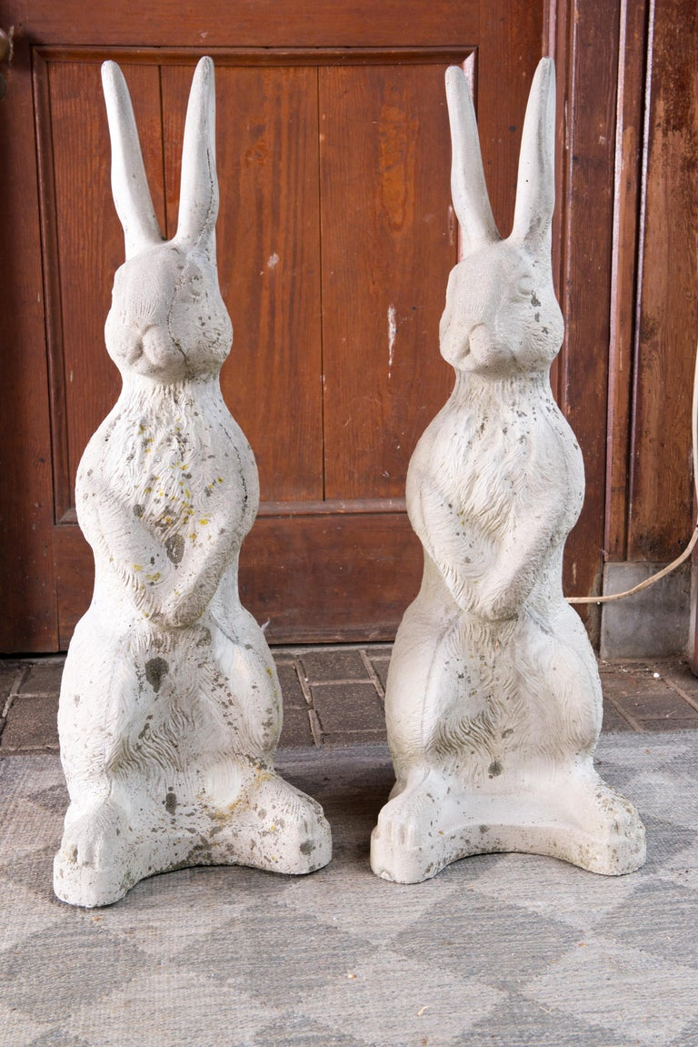 A pair of audacious rabbits ready to reign over your garden!