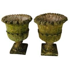 Pair of Cast Stone English Garden Urns