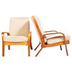 Pair of Chairs for the Modern Home