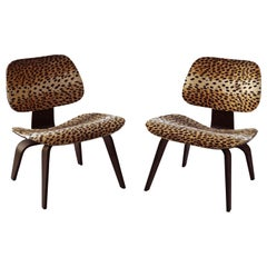 Pair of Charles Eames for Herman Miller LCW Lounge Chairs