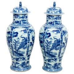 Pair of Chinese Blue and White Large Decorative Vase