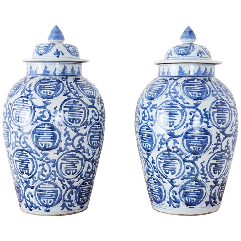 Pair of Chinese Blue and White Porcelain Ginger Jars For Sale