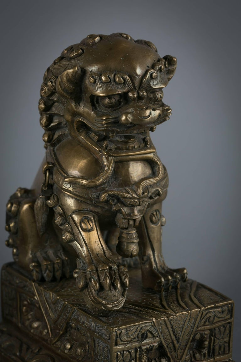 Pair of Chinese Bronze Foo Dogs, circa 1860 In Excellent Condition For Sale In New York, NY