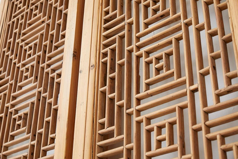 Pair of Chinese Carved Doors with Lattice Windows For Sale 5