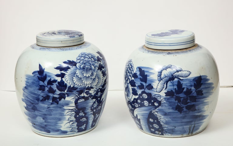 Pair of Chinese Export Ginger Jars For Sale 8