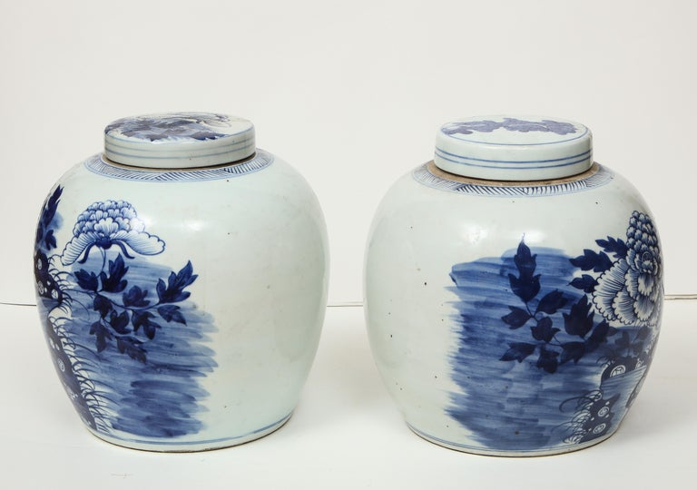 Pair of Chinese Export Ginger Jars For Sale 10