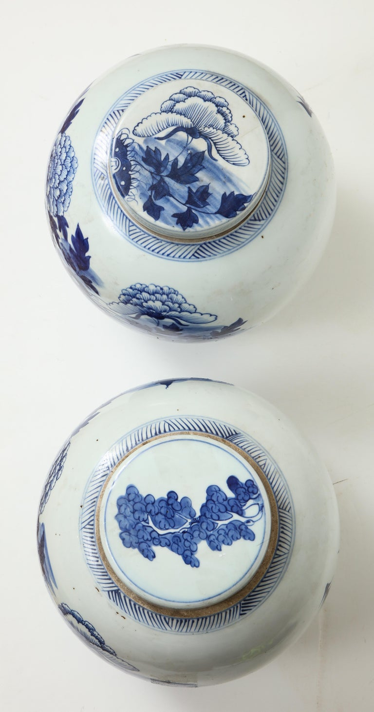 Pair of Chinese Export Ginger Jars For Sale 12