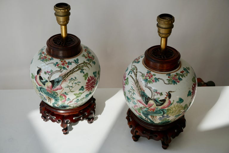 Pair of Chinese Export Porcelain Painted Ginger Jar Table Lamps with Birds For Sale 1