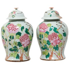 Pair of Chinese Famille Rose Peony Ginger Jars