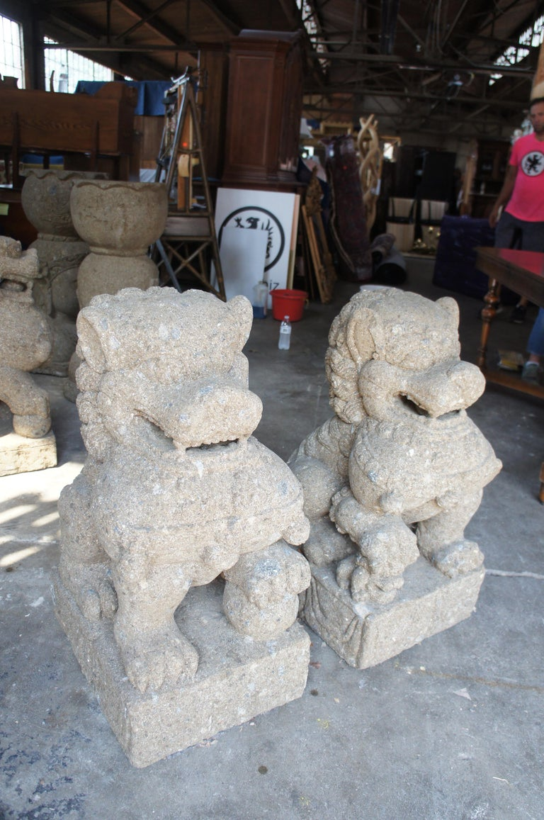 Pair of Chinese Foo Dogs Concrete Statue Guardians Lions Stone Garden For Sale 8